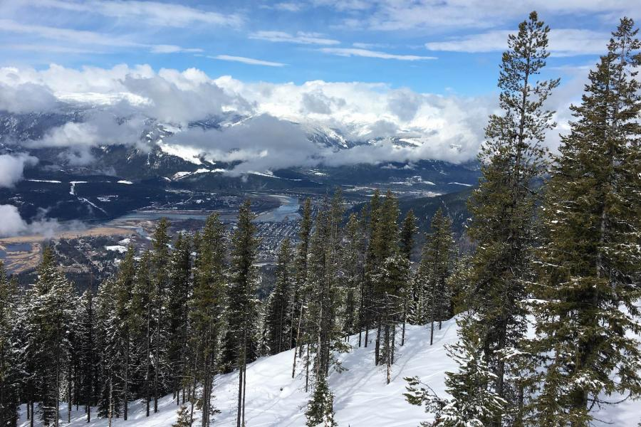 Revelstoke - Blick vom Skigebiet