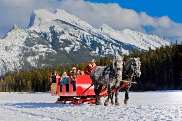 Banff - Pferdeschlittenfahrt im Winter