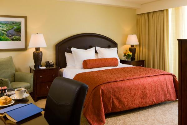 Limelight Hotel - Standard Zimmer mit King Size Bett