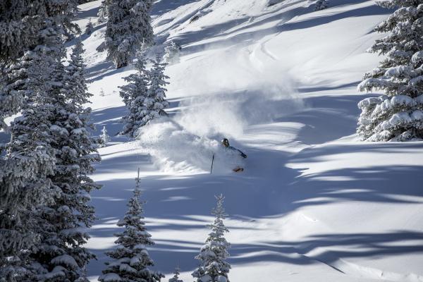 Skifahrer fährt im tiefen Pulverschnee