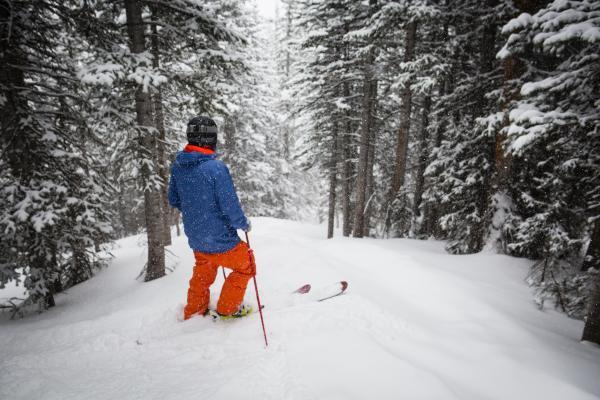 Skifahrer steht in Waldabfahrt und schaut talwärts