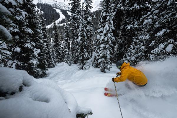 Skifahrer oberhalb steiler Waldafahrt im Skigebiet Banff Sunshine